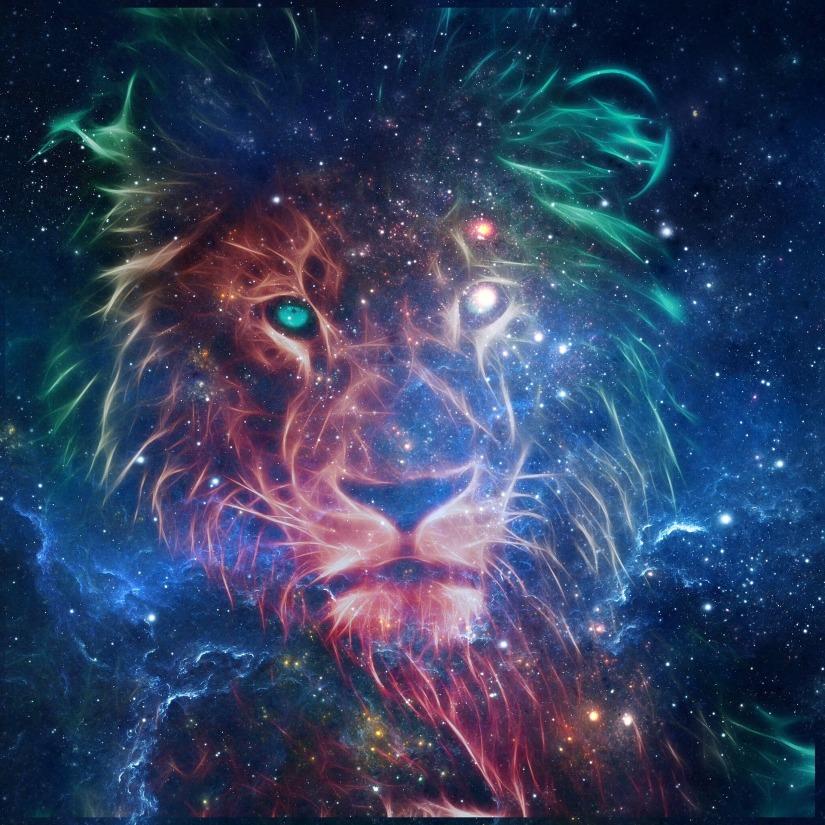 lion-2672167_1920
